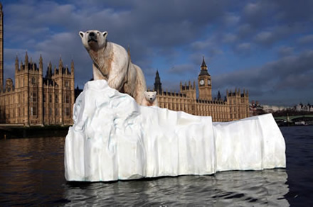 Polar Bears Stranded on Thames